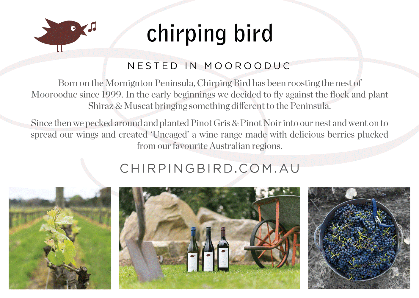 https://www.chirpingbird.com.au/